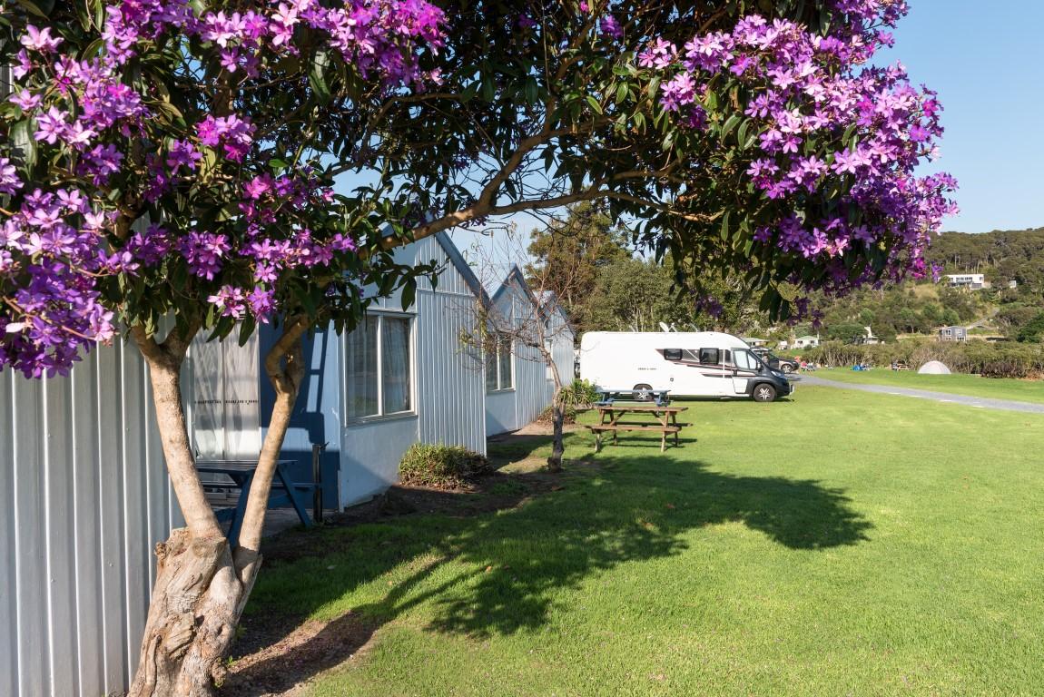 Waitangi Holiday Park Campgrounds