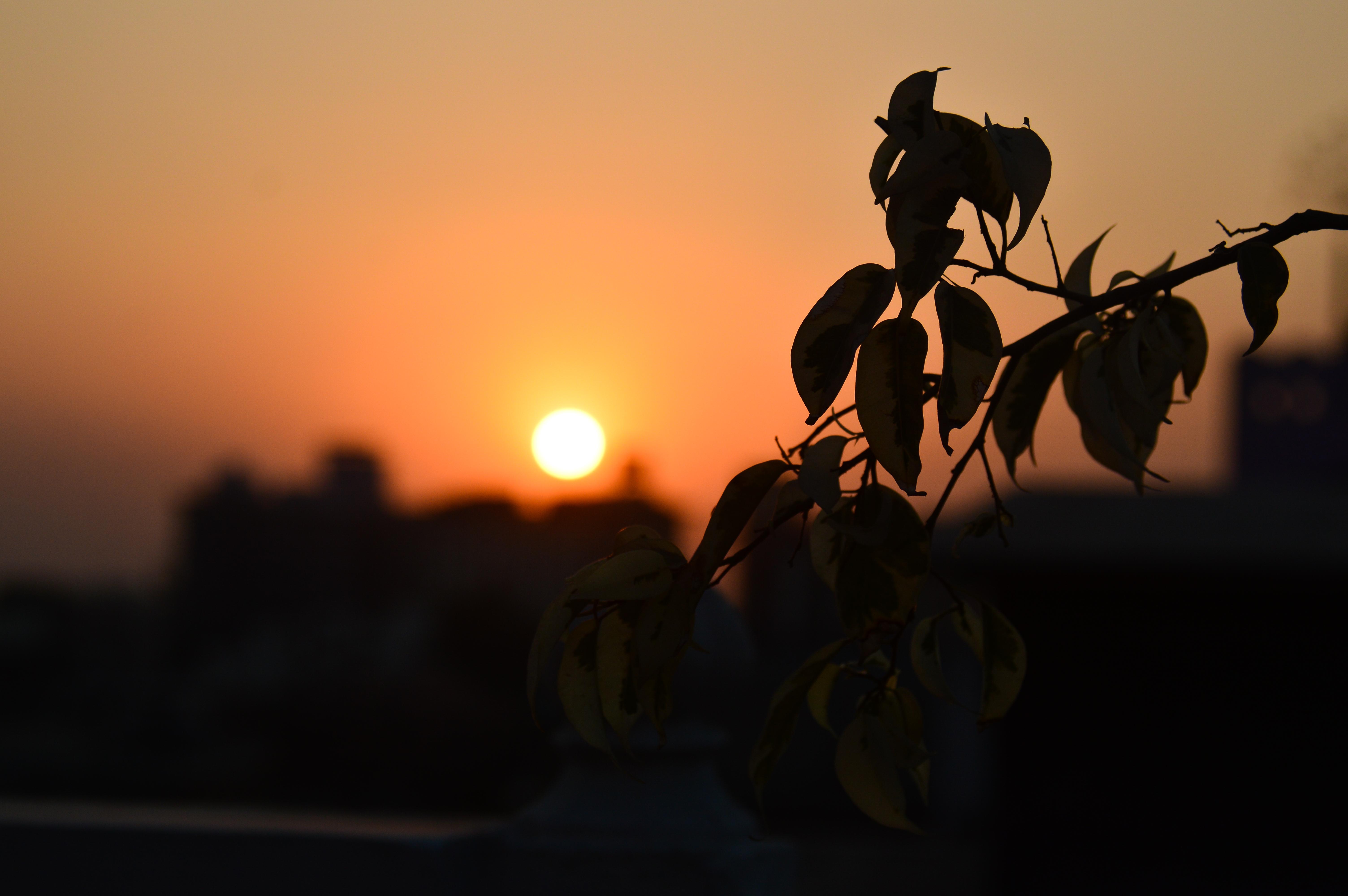 amazing sunsets 2