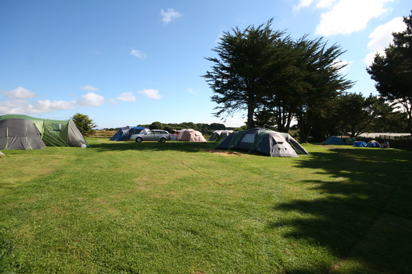 Camping Meadow